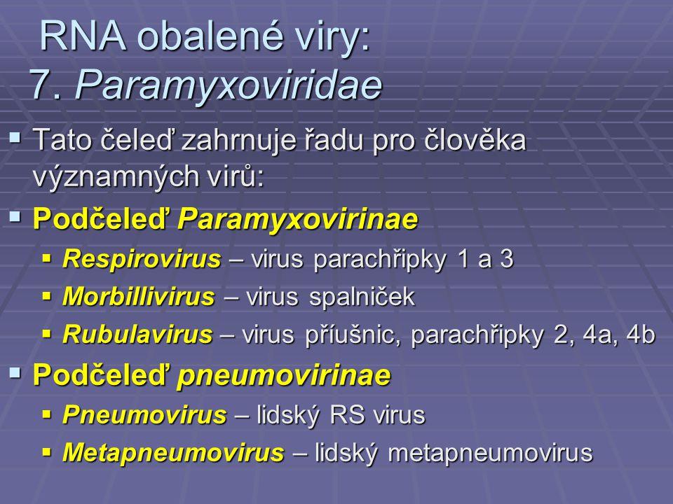 RNA obalené viry: 7. Paramyxoviridae