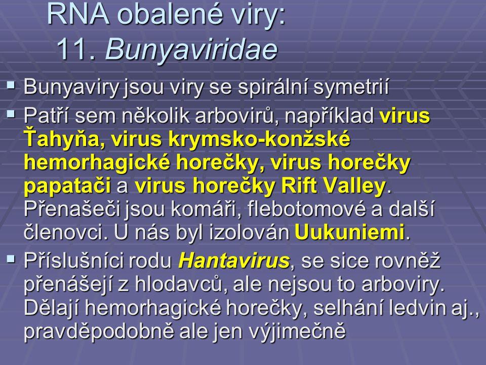 RNA obalené viry: 11. Bunyaviridae