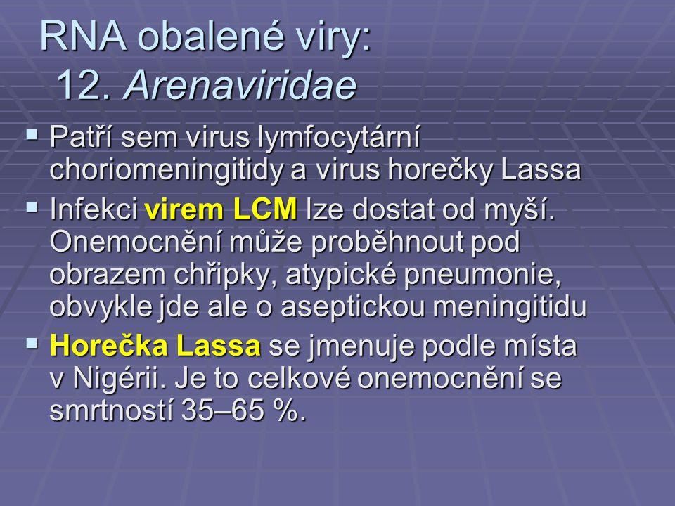 RNA obalené viry: 12. Arenaviridae