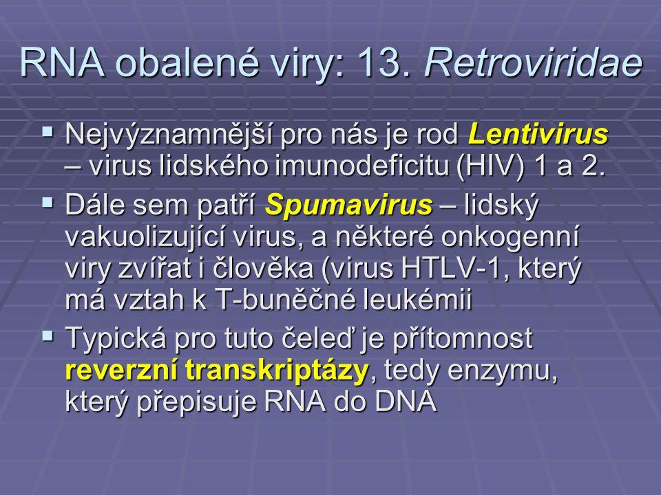 RNA obalené viry: 13. Retroviridae