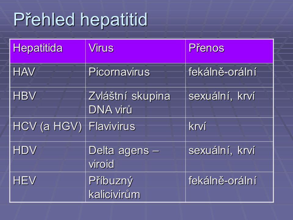 Přehled hepatitid Hepatitida Virus Přenos HAV Picornavirus