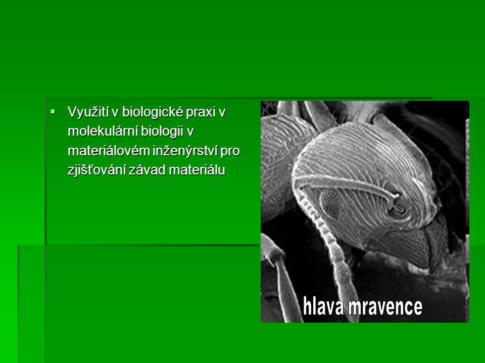 Využití v biologické praxi v