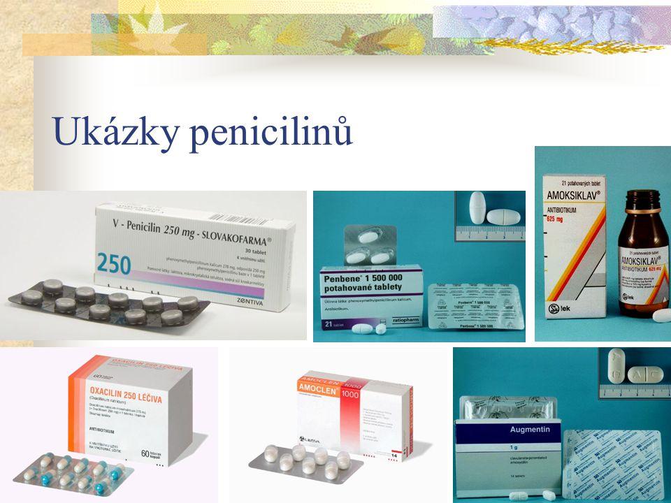 Ukázky penicilinů