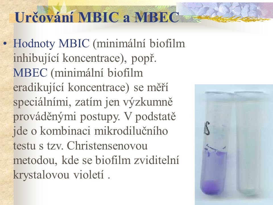Určování MBIC a MBEC