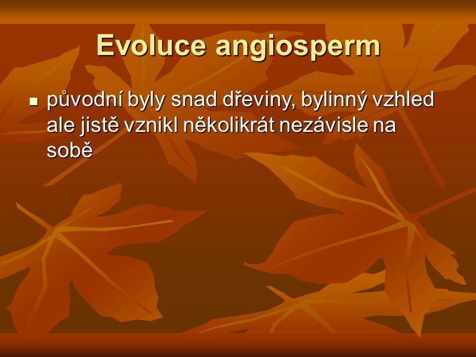 Evoluce angiosperm původní byly snad dřeviny, bylinný vzhled ale jistě vznikl několikrát nezávisle na sobě.