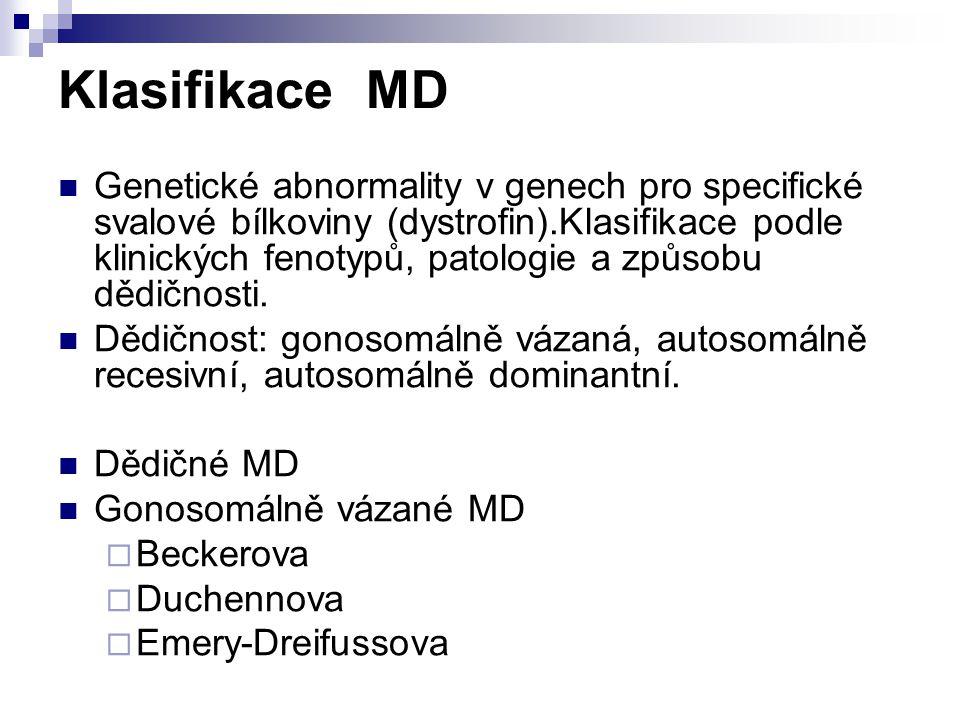 Klasifikace MD