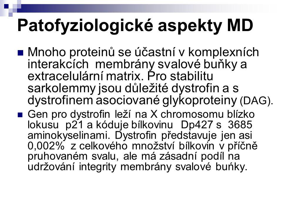 Patofyziologické aspekty MD