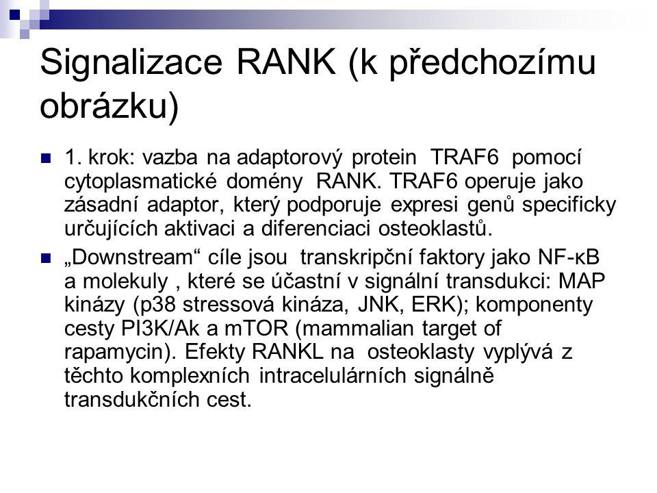 Signalizace RANK (k předchozímu obrázku)