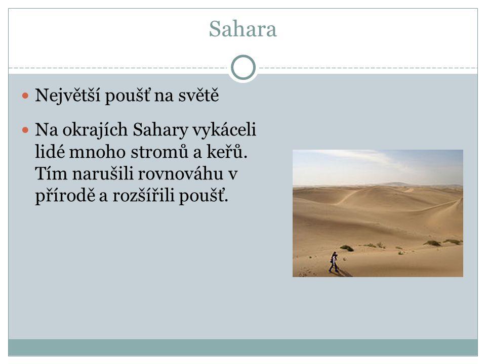Sahara Největší poušť na světě