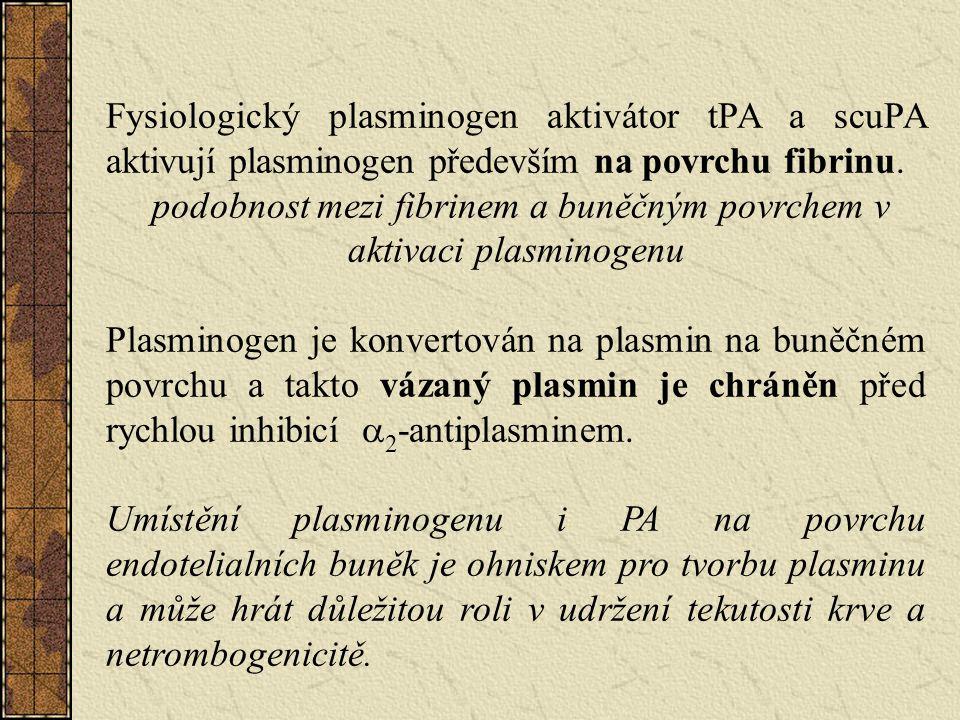 podobnost mezi fibrinem a buněčným povrchem v aktivaci plasminogenu