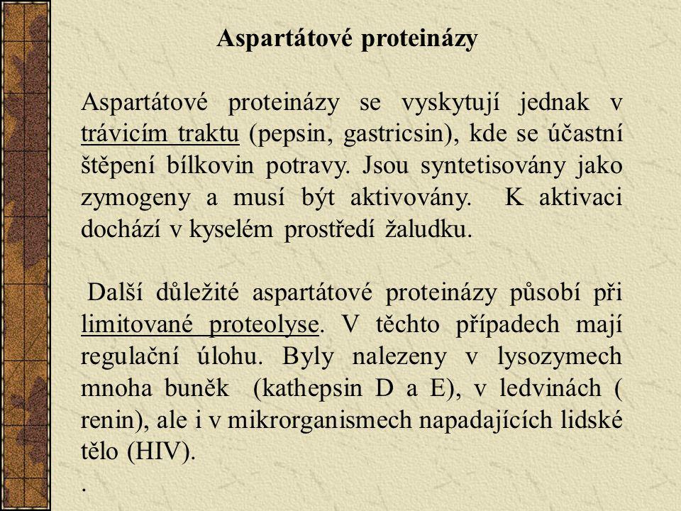 Aspartátové proteinázy