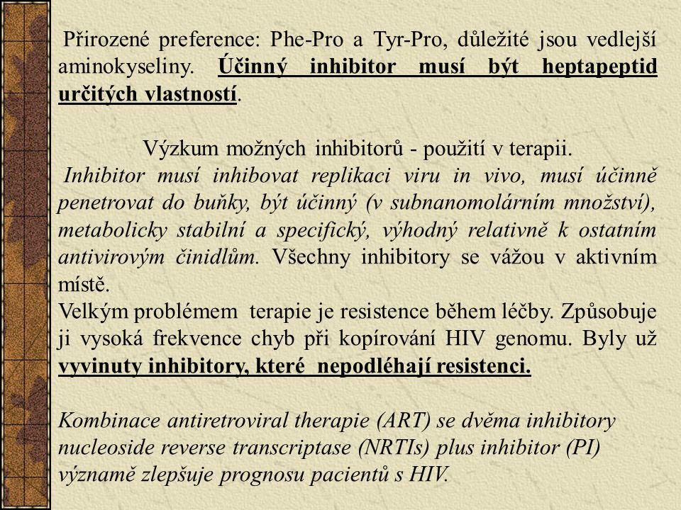 Výzkum možných inhibitorů - použití v terapii.