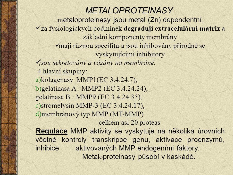 metaloproteinasy jsou metal (Zn) dependentní,