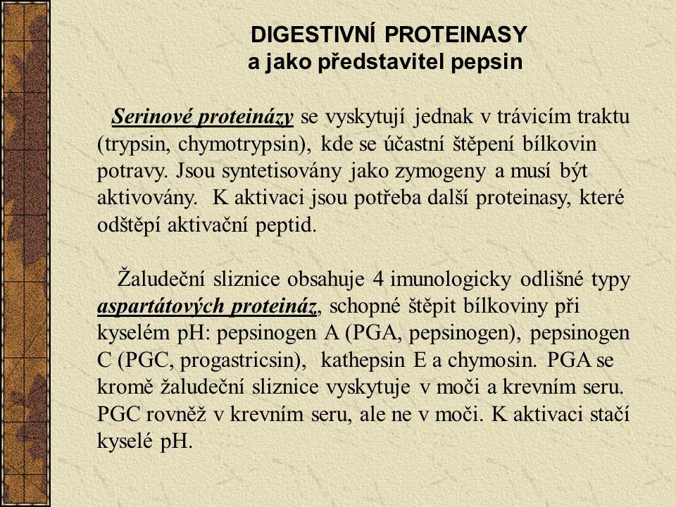 DIGESTIVNÍ PROTEINASY