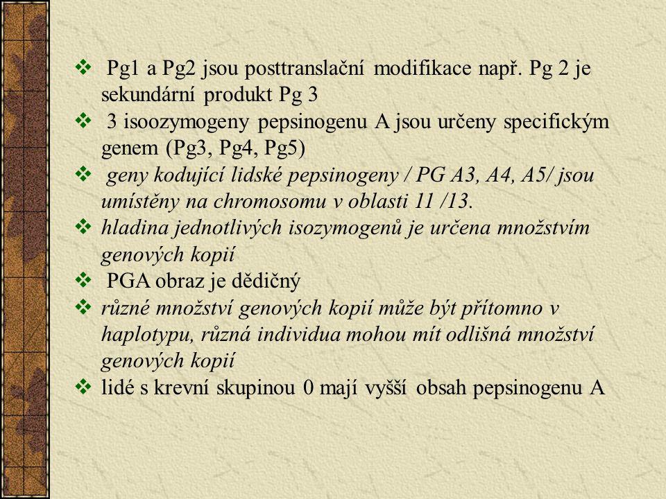 Pg1 a Pg2 jsou posttranslační modifikace např