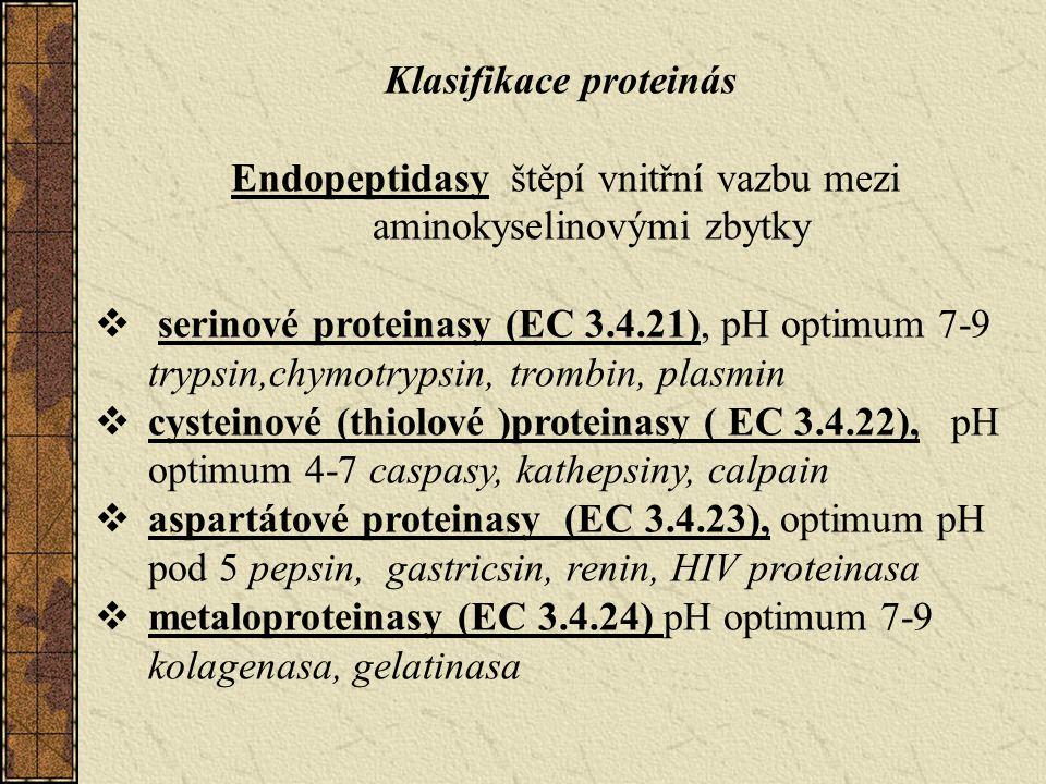Klasifikace proteinás