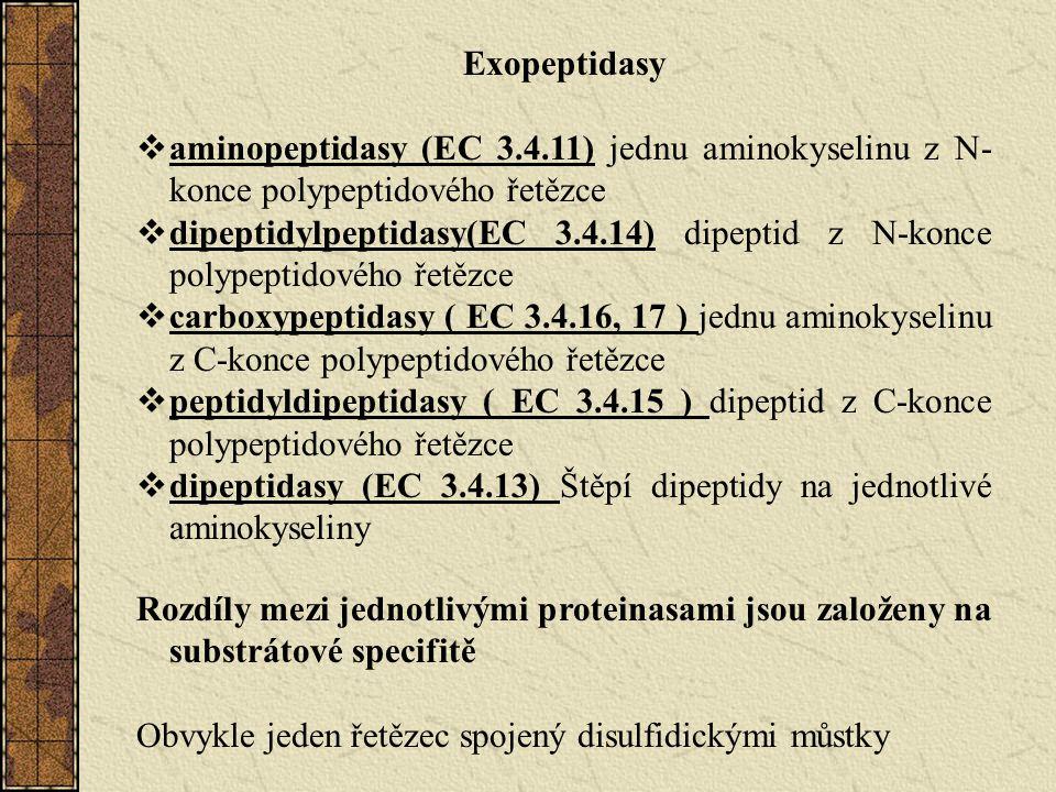 Exopeptidasy aminopeptidasy (EC 3.4.11) jednu aminokyselinu z N-konce polypeptidového řetězce.