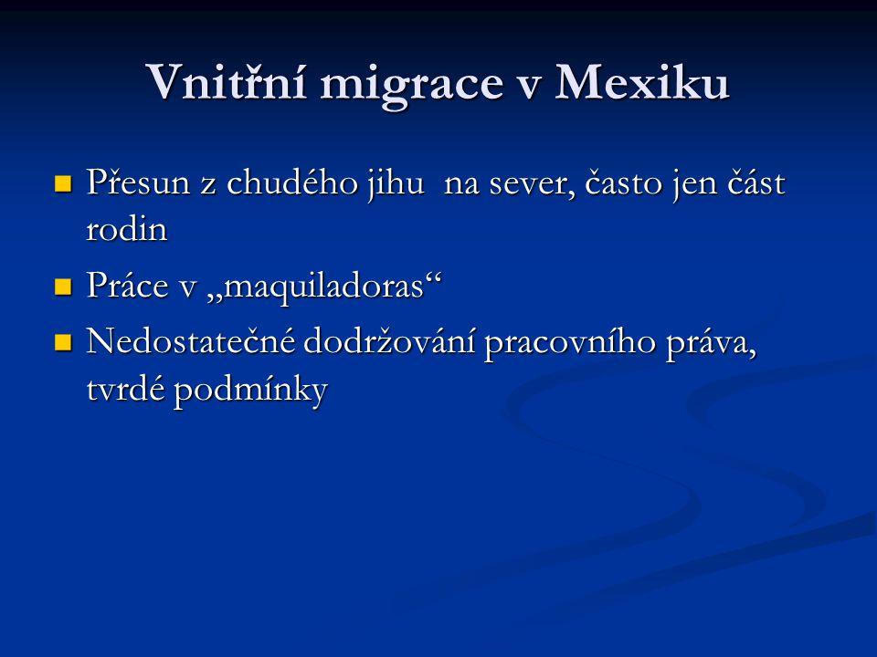Vnitřní migrace v Mexiku