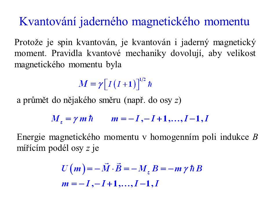 Kvantování jaderného magnetického momentu