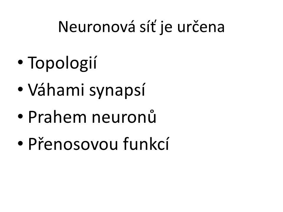 Neuronová síť je určena