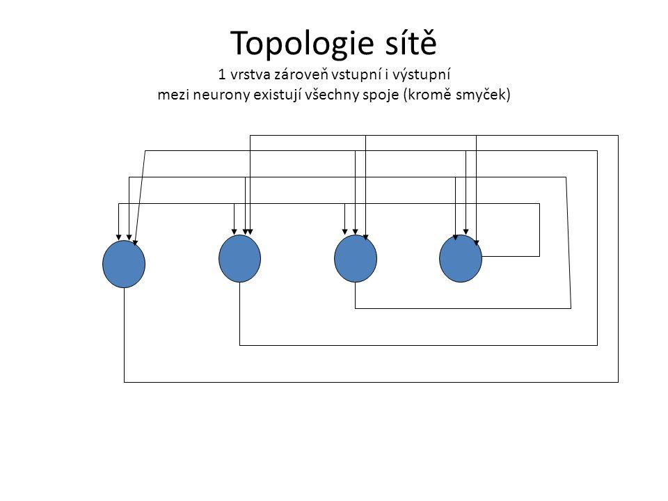 Topologie sítě 1 vrstva zároveň vstupní i výstupní mezi neurony existují všechny spoje (kromě smyček)