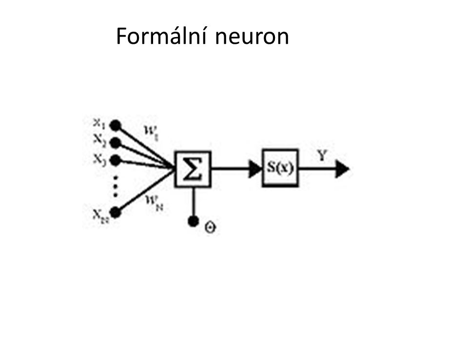 Formální neuron