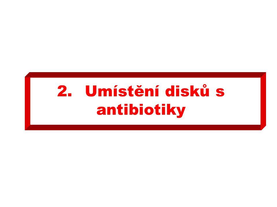 2. Umístění disků s antibiotiky