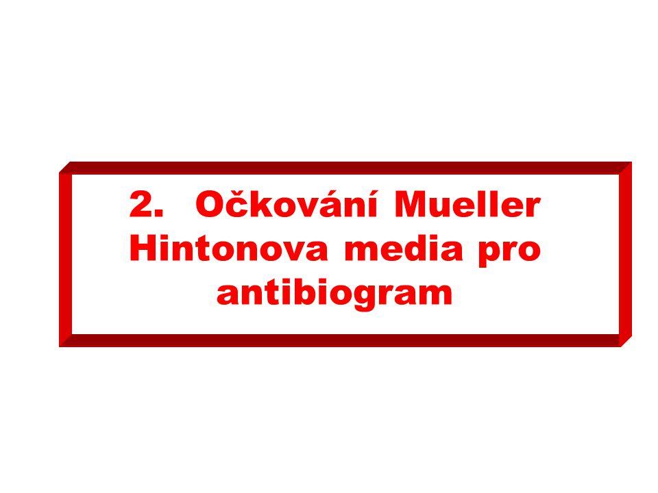 2. Očkování Mueller Hintonova media pro antibiogram