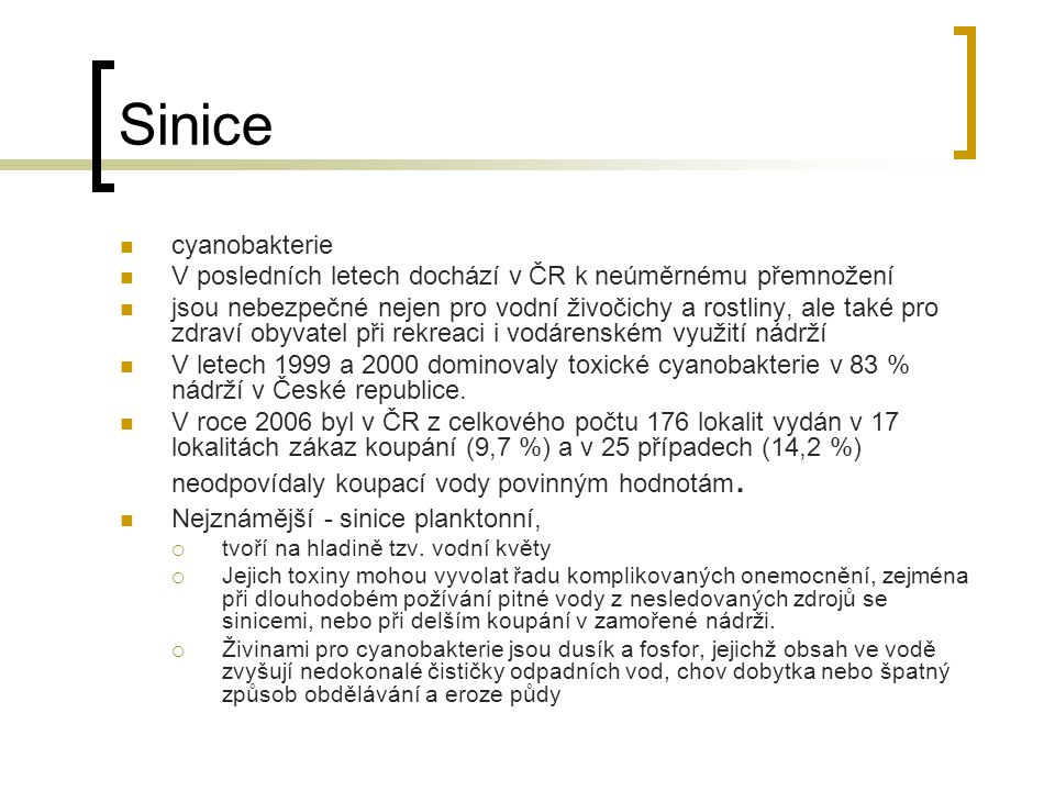 Sinice cyanobakterie. V posledních letech dochází v ČR k neúměrnému přemnožení.