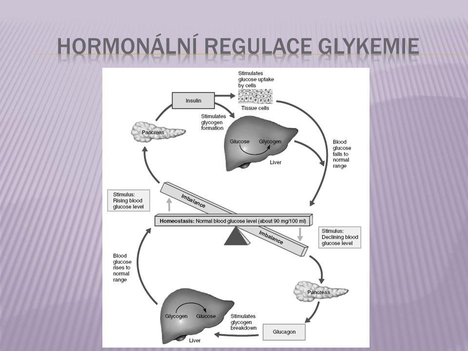 Hormonální regulace glykemie