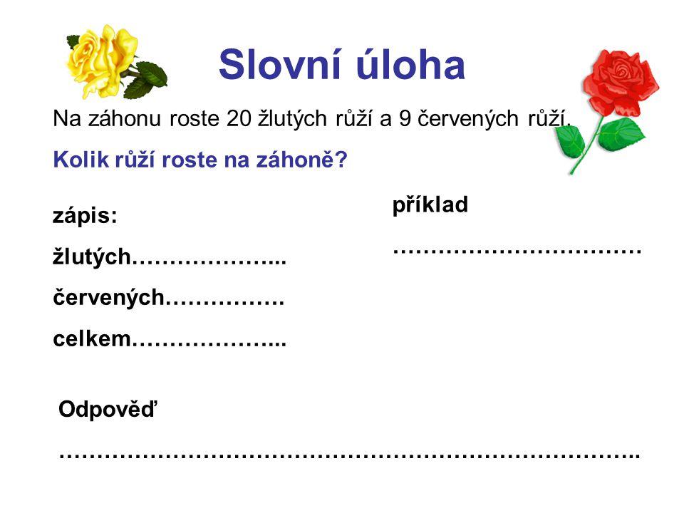 Slovní úloha Na záhonu roste 20 žlutých růží a 9 červených růží.