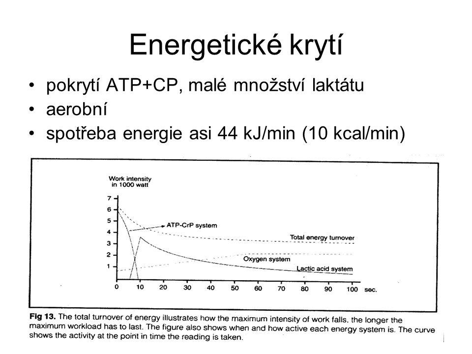 Energetické krytí pokrytí ATP+CP, malé množství laktátu aerobní