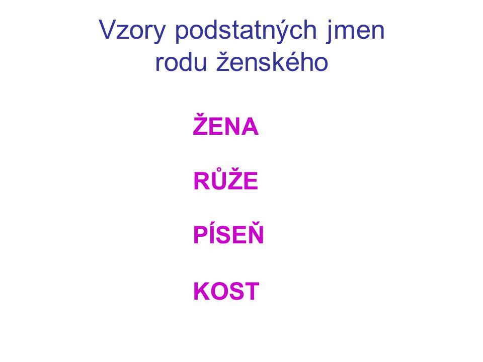 Vzory podstatných jmen rodu ženského