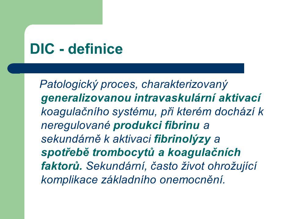 DIC - definice