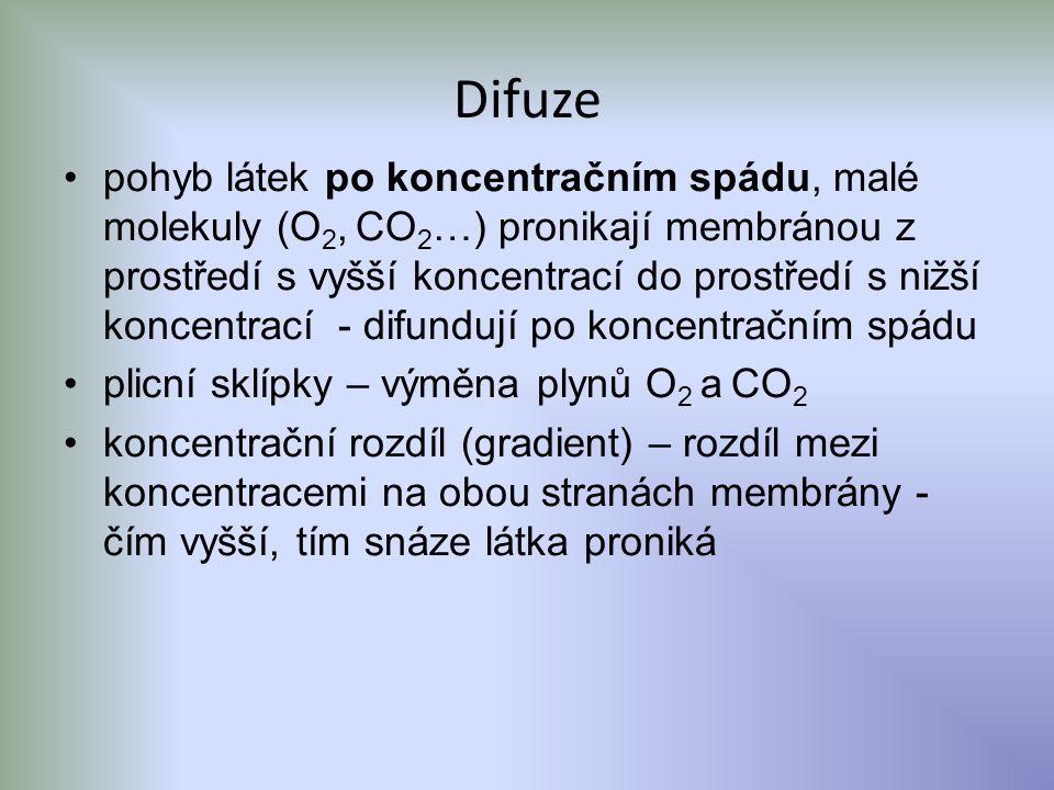 Difuze