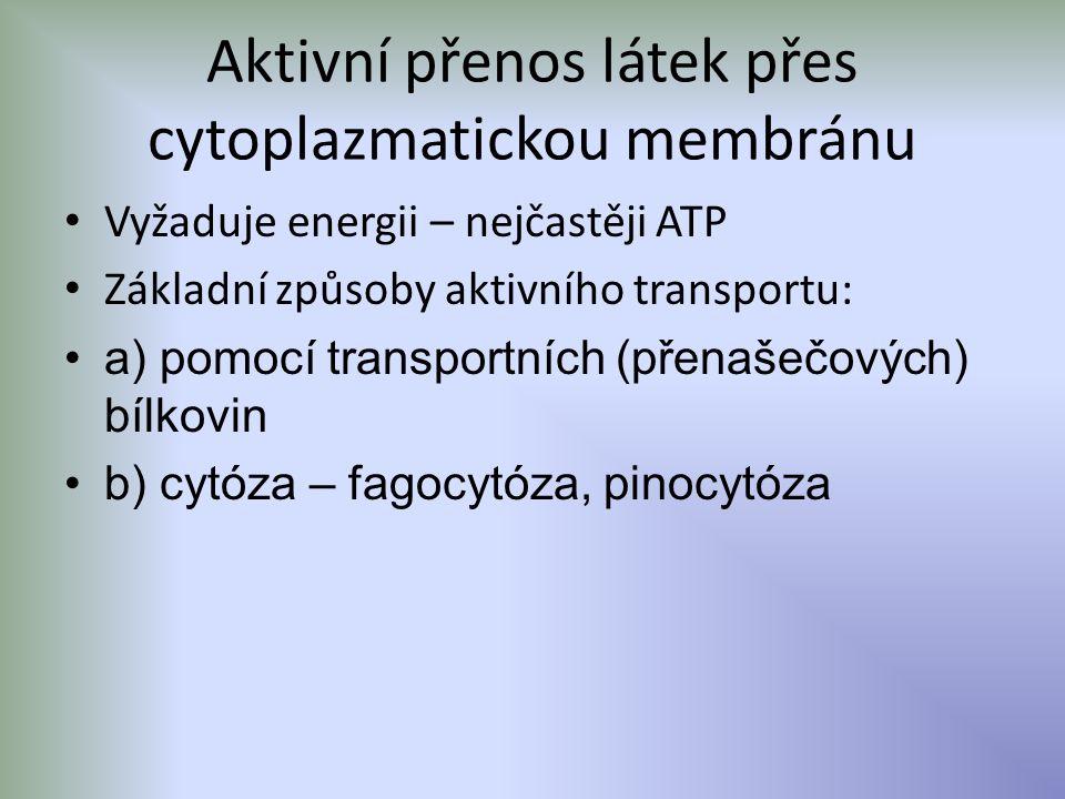 Aktivní přenos látek přes cytoplazmatickou membránu