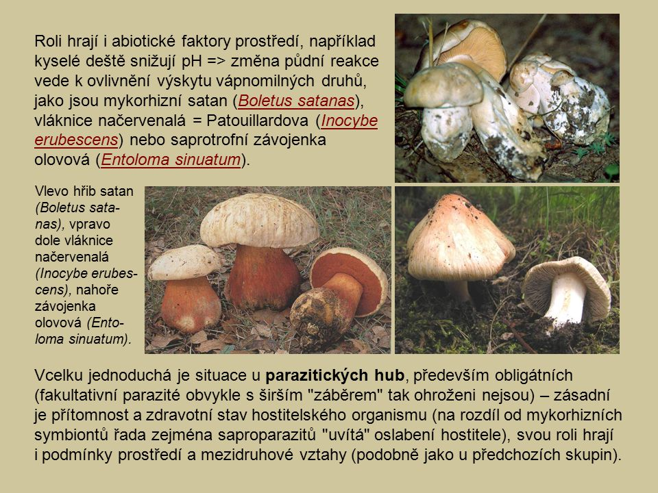 Roli hrají i abiotické faktory prostředí, například kyselé deště snižují pH => změna půdní reakce vede k ovlivnění výskytu vápnomilných druhů, jako jsou mykorhizní satan (Boletus satanas), vláknice načervenalá = Patouillardova (Inocybe erubescens) nebo saprotrofní závojenka olovová (Entoloma sinuatum).