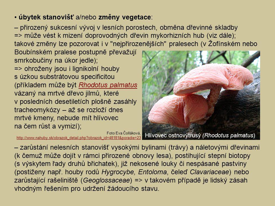 • úbytek stanovišť a/nebo změny vegetace: