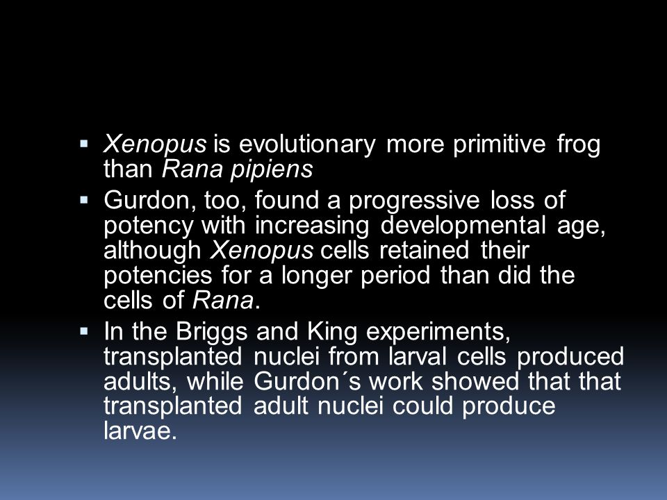 Xenopus is evolutionary more primitive frog than Rana pipiens