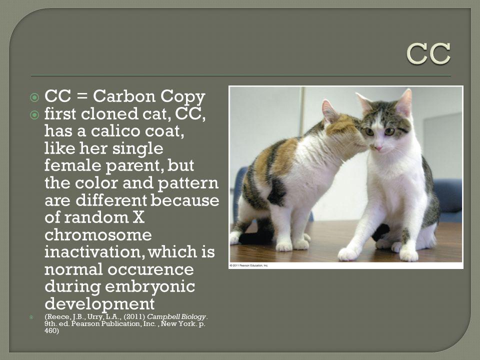 CC CC = Carbon Copy.