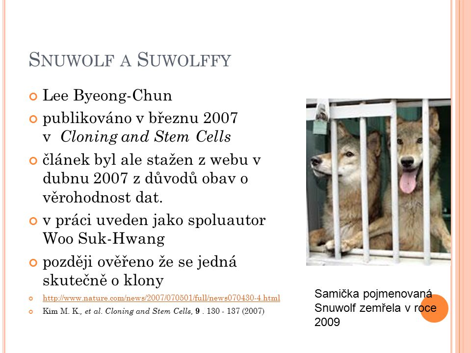 Snuwolf a Suwolffy Lee Byeong-Chun
