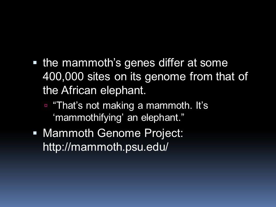 Mammoth Genome Project: http://mammoth.psu.edu/