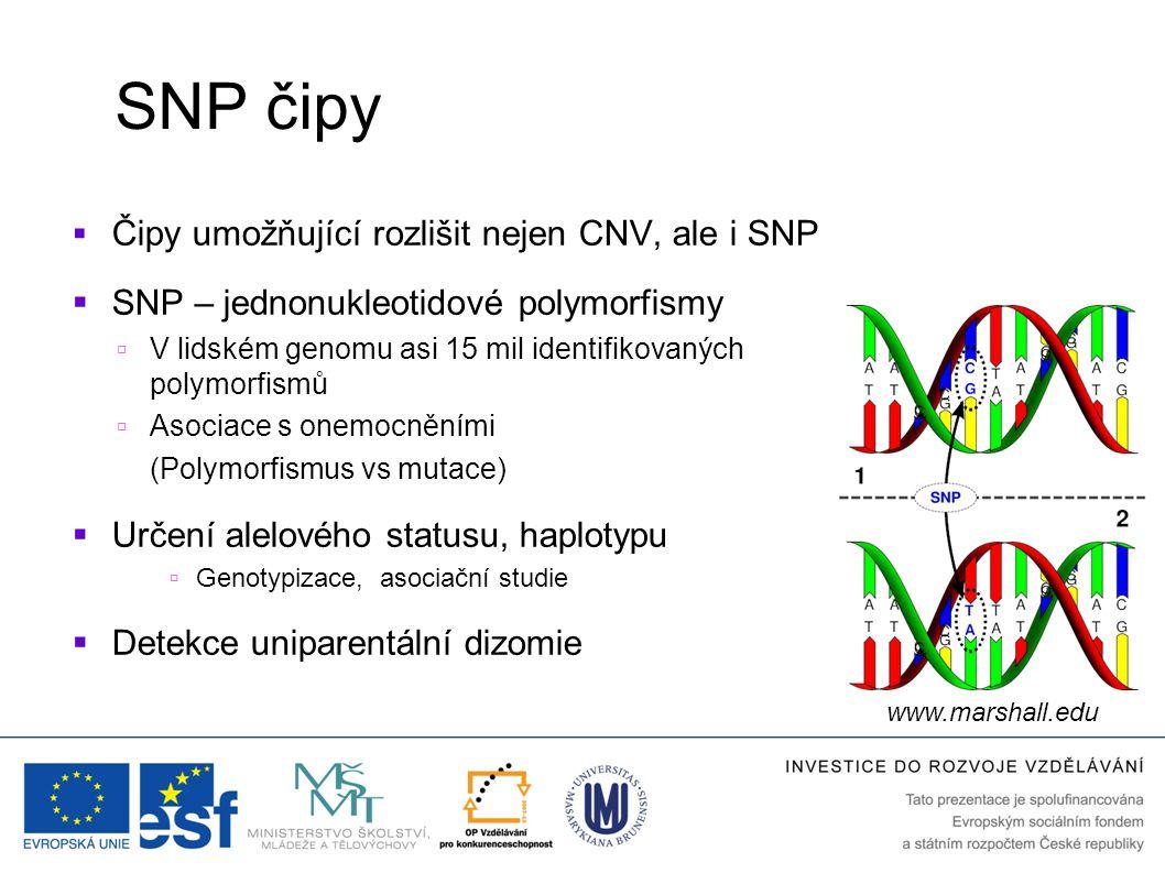 SNP čipy Čipy umožňující rozlišit nejen CNV, ale i SNP