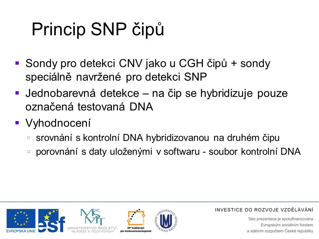 Princip SNP čipů Sondy pro detekci CNV jako u CGH čipů + sondy speciálně navržené pro detekci SNP.