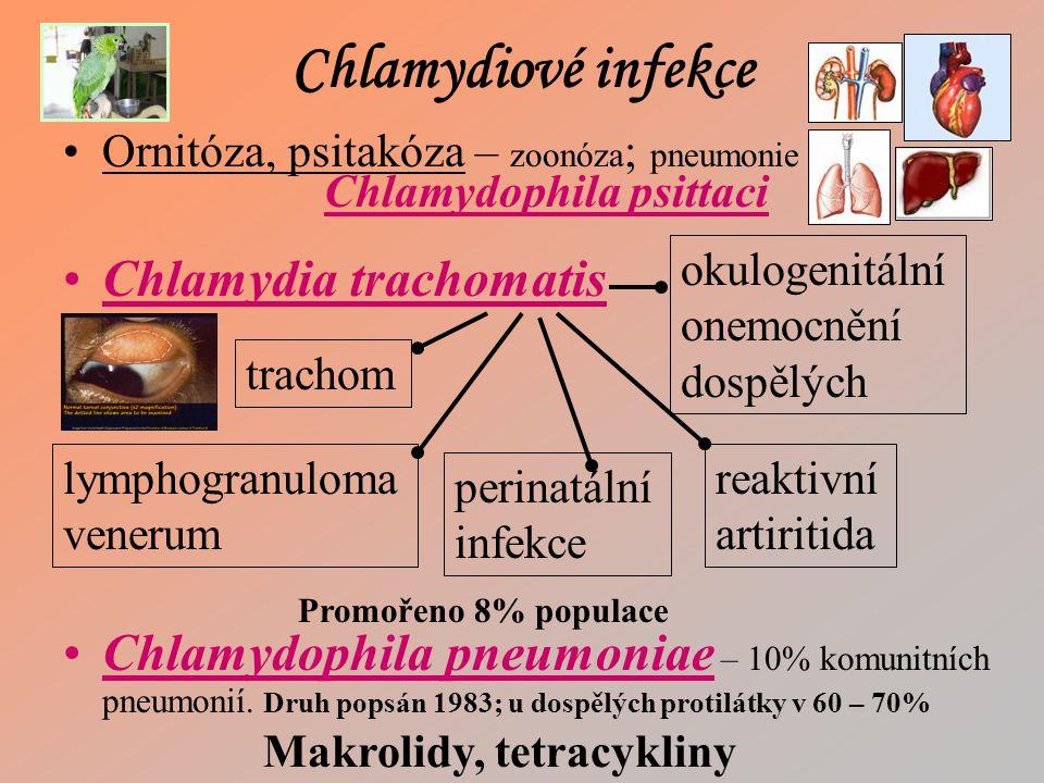 Chlamydiové infekce Chlamydia trachomatis