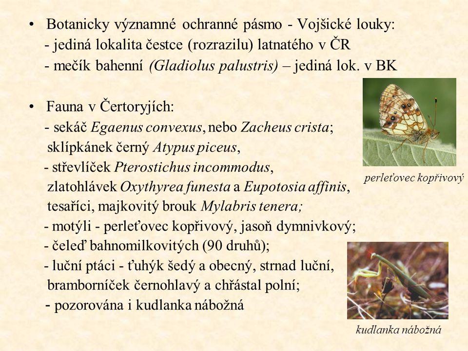 Botanicky významné ochranné pásmo - Vojšické louky: