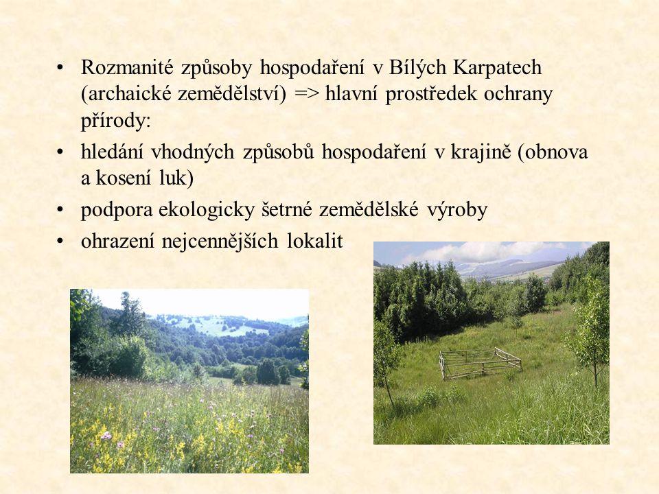 Rozmanité způsoby hospodaření v Bílých Karpatech (archaické zemědělství) => hlavní prostředek ochrany přírody: