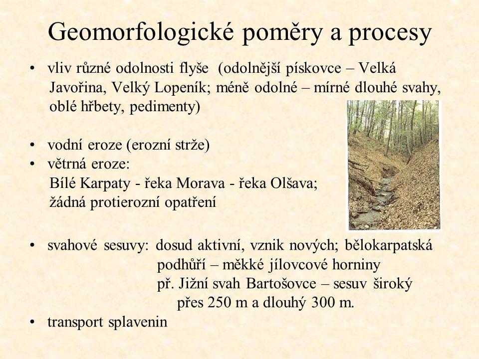 Geomorfologické poměry a procesy