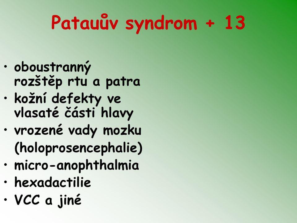 Patauův syndrom + 13 oboustranný rozštěp rtu a patra