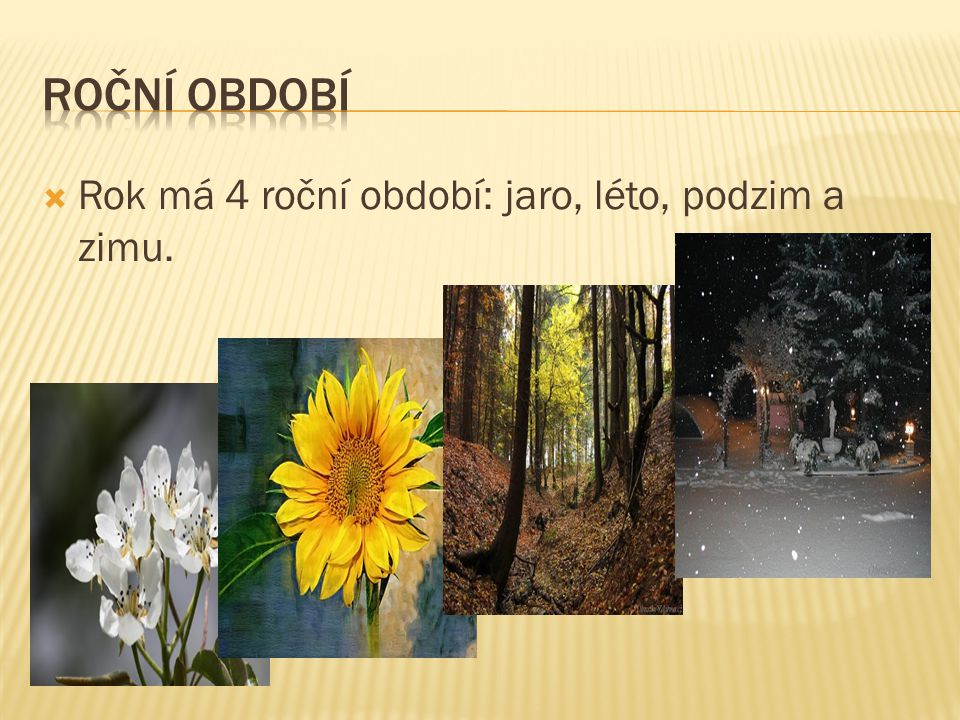 Roční období Rok má 4 roční období: jaro, léto, podzim a zimu.